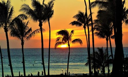 Maui vs The Big Island: Which destination is best?