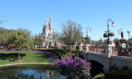 How to Spend a Honeymoon in Orlando