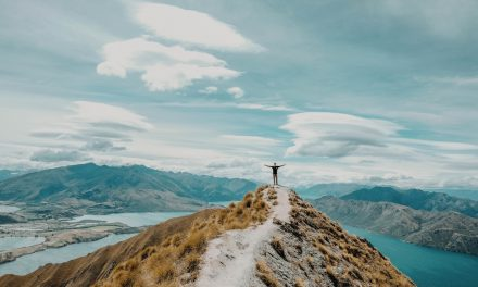 How to Travel New Zealand on Budget