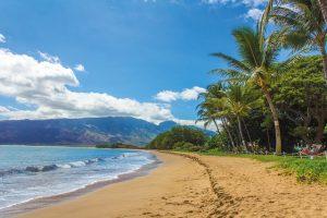 beautiful beaches of maui